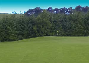 Hole 1: The Island, Woll Golf Course